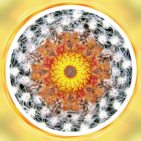 Mandala Circle Wheel in Black, White and Yellow Colors with Meditation Spiral Illustration 写真素材