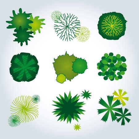 Set of Nine Tree Icons - Landscape Design Elements