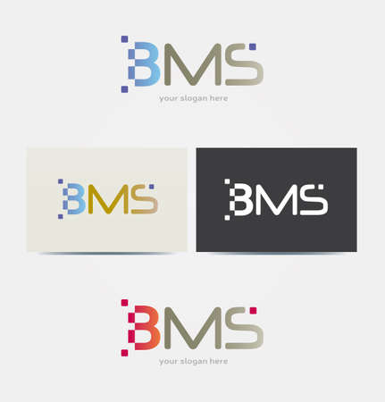 Logo Design suitable for IT Business - with Letters BMS - Digital Style Illustration