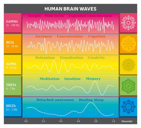 Human Brain Waves Diagram in Rainbow Colors with Explanations - Alpha Beta Gamma Theta Delta Frequencies and Mandalas Illustration