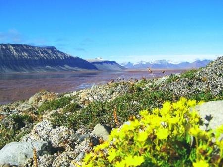 goodliness: Svalbard, Spitzbergen
