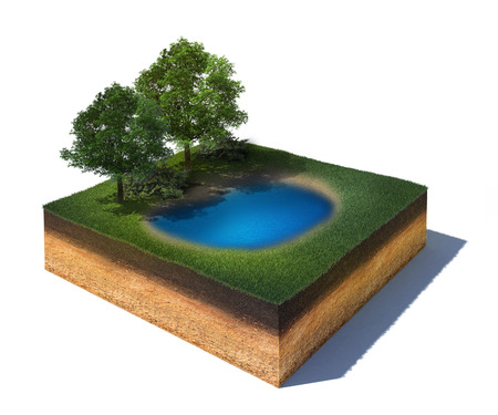 3d rendered illustration of cross section of ground with a lake and some trees isolated on white Standard-Bild