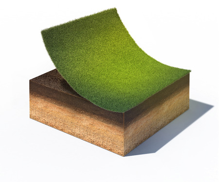 3d rendered illustration of cross section of ground with part of lawn isolated on white