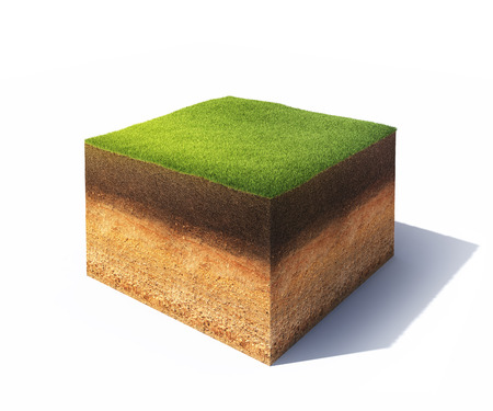 under ground: 3d model of cross section of ground with grass isolated on white Stock Photo