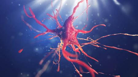 3d illustratie van neurale cel. Close-up van neuron. Science concept. Stockfoto