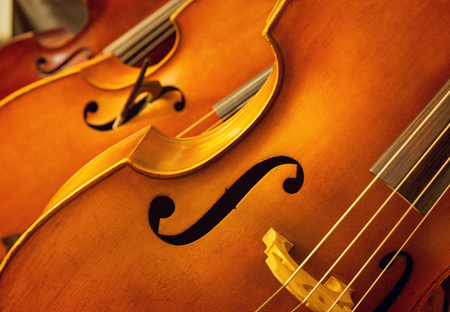 Close-up of old violins photo