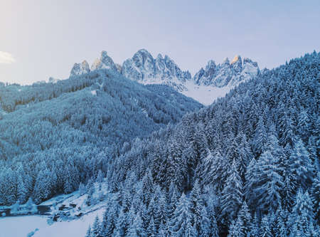 Aerial top view to snowy trees of winter pines. Dolomiti Alps, Italy. High needles in the forest. Beautiful nature landscape. Blue colour of the year. Texture, pattern and structure. Stok Fotoğraf