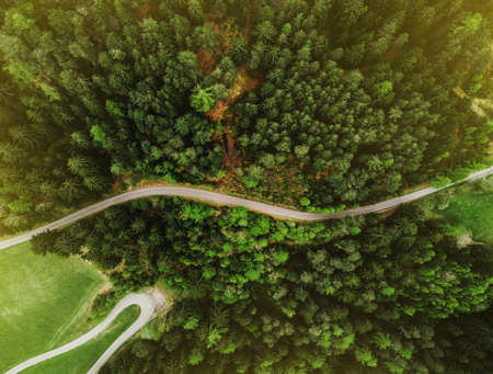 View of the green forest from above with road. Beautiful aerial picture. Abstract texture concept. Postcard of structure. Ecological scenery woodland and nature.