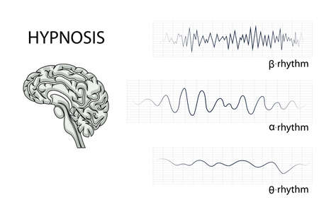 illustration of the brain, alpha, beta, and theta rhythm. Illustration