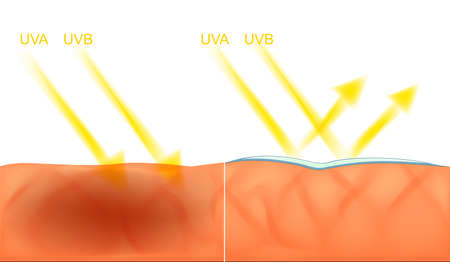 dispersed: illustration of skin damage from the sun and protection UV filter