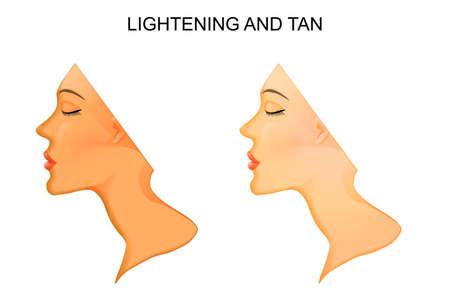 lightening: illustration of the skin. Tanning and skin lightening.