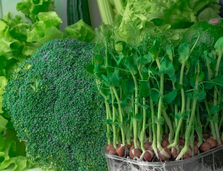Green healthy bio vegetables Reklamní fotografie