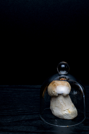 one boletebolete, cep is isolated on a black background in glass, objekt, raw food , wild mushroom with a brown hat.