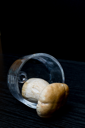 one boletebolete, cep is isolated on a black background in glass, objekt, raw food , wild mushroom with a brown hat. free space for text