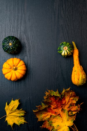 Ripe green and orange pumpkins lie on a yellow flaxen cloth among the yellow fallen leaves, black wooden table Thanksgiving Day. 스톡 콘텐츠