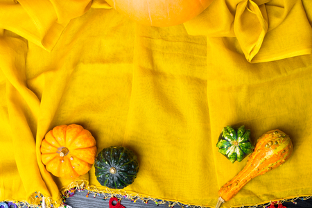 Ripe green and orange pumpkins lie on a yellow flaxen cloth among the yellow fallen leaves, Thanksgiving Day.