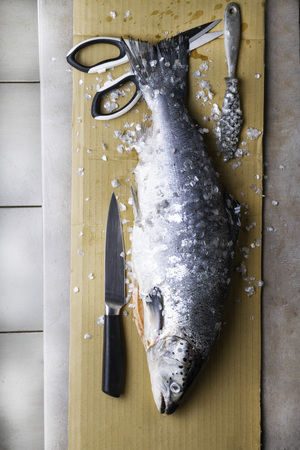 Large fresh salmon, knife and scissors. Preparation for cutting fish. Popular in diet and healthy nutrition high protein source Reklamní fotografie