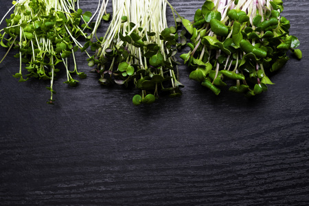 Vitamin micro greens sprouts for weight loss, detoxification and antioxidant. Stock Photo
