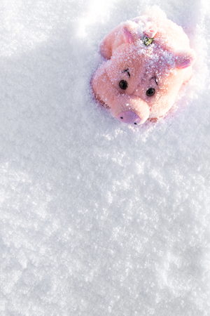 Toy pink pig with flower on white snow. Copy space. Stock Photo