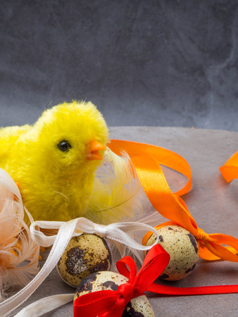 Cute little chicken isolated on grey background, eggs decorated with bows Standard-Bild - 119578797