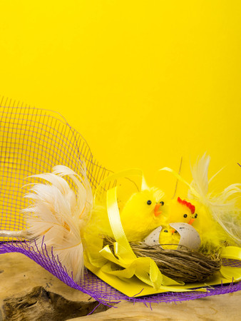 easter decoration, yellow chicks seated in a nest on wooden board, copy space