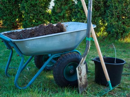 Shovel, wheelbarrow in garden grass, with bucket, gardening concept, outdoor