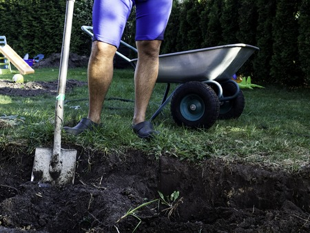 Worker digs the black soil with shovel in the vegetable garden, agriculture and tough work concept, gardening