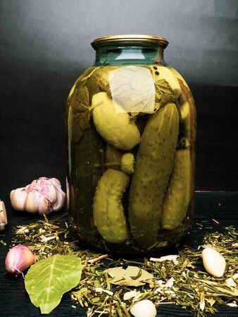 Glass jars with pickled cucumbers, spices currant and bay leafs, garlic, black pepper, copy space