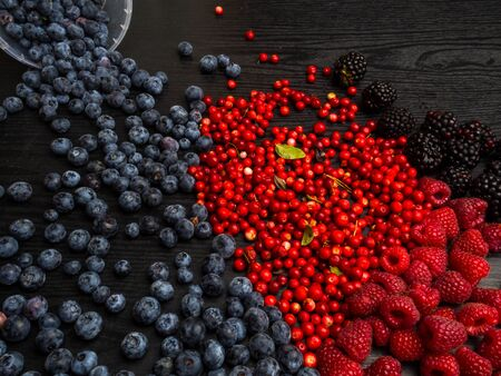 super antioxidants. superfood. mix of fresh berries, rich with resveratrol, vitamins, raw food ingredients. nutrition background, nutrient-rich foods are good for your heart and brain. Detox 写真素材 - 129264456