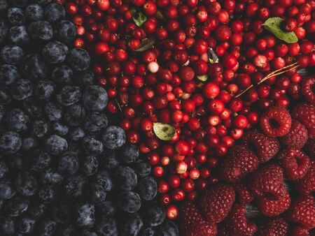 super antioxidants. superfood. mix of fresh berries, rich with resveratrol, vitamins, raw food ingredients. nutrition background, nutrient-rich foods are good for your heart and brain. Detox 写真素材 - 129264460