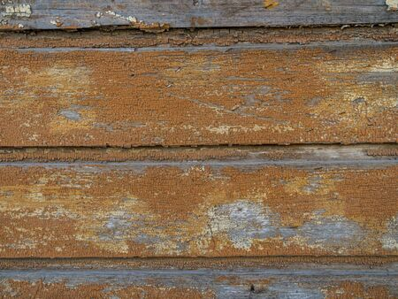 Weathered wooden peeling paint, nailed boarded fence, copy space Stock Photo