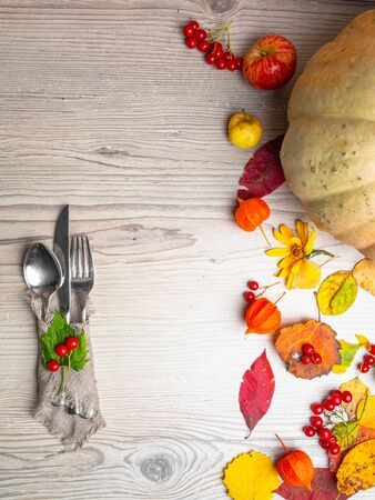 Seasonal table setting with pumpki, festive Thanksgiving with cutlery and red berries 写真素材