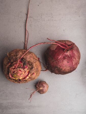 The purple organic Beets roots on grey concrete table, copy space
