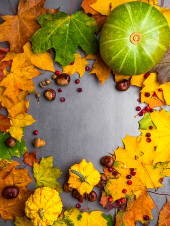 Festive autumn decor from pumpkins, berries acorns, chesnuts, leaves on a grey concrete background. Concept of Thanksgiving day or Halloween. Flat lay autumn composition with copy space. Stock Photo