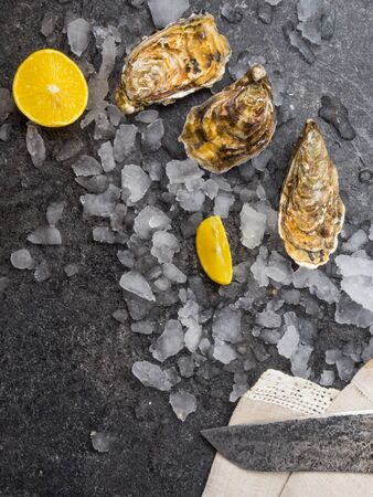 fresh raw oysters on ice with lemon slices, knife. Mollusk of the Atlantic Ocean, iodine rich food