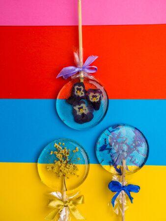 Organic handmade round lollipops with flowers as elder, cornflower, violet flowers inside on colorful blue, yellow, red, pink background. Healthy snack Zdjęcie Seryjne