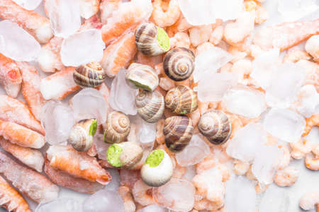assortment of frozen seafood on ice cubes, shrimps, Babylonia areolata shellfish snails, langoustines, rich in iodine, antioxidants and vitamin, close up