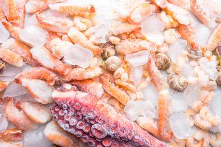 assortment of frozen seafood on ice cubes, shrimps, octopus, Babylonia areolata shellfish snails, langoustines, rich in iodine, antioxidants and vitamin, top view, copy space 版權商用圖片