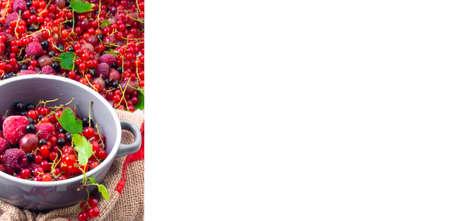 Banner of Assorted of fresh ripe berries in bowl. Selectve focus. Copy space