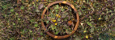 Dry Healthy Herbs Different Assortment in Eco Zero Wooden Bowl, Herbal teas, homeopathy and alternative medicine concept. Close up, top view. Flat lay. Selective focus