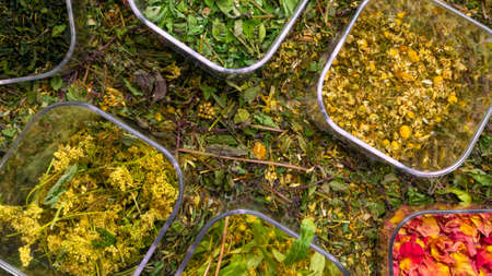mix of healing herbs, herbal medicine, chinese and natural alternative remedies with assortment of fresh herbs and flowers tea collection. Top view