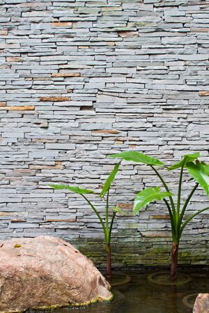 Brick Wall for pond with rocks and plants in the water for decoration
