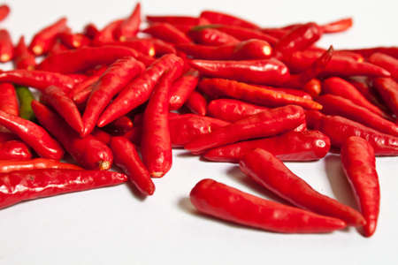 Closed up of red Chilli on white background photo
