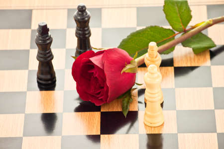 Rose on the chessboard with chess pieces battle, represent love battle,competition , fight for love or peace photo