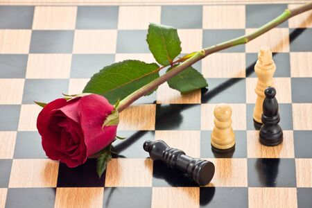 romance strategies: Rose on the chessboard with chess pieces battle, represent love battle,competition , fight for love or peace