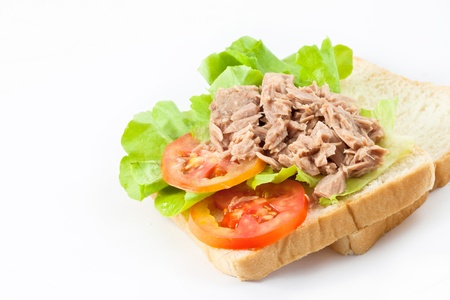 Tuna on bread for sandwich