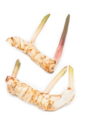 Raw fresh Galangal on white isolated photo