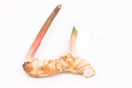 galangal: Raw fresh Galangal on white isolated Stock Photo