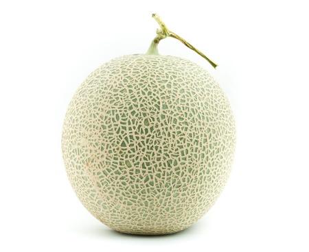 Big fresh Melon on white background