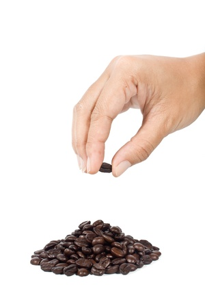 Hand picking  up  the coffee bean on  white background photo